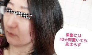 IMG 20210202 125348 300x181 - カラーバターを長時間放置して検証。黒髪とブリーチの比較も