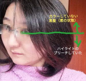 IMG 20210203 084534 1 300x282 - カラーバターを長時間放置して検証。黒髪とブリーチの比較も