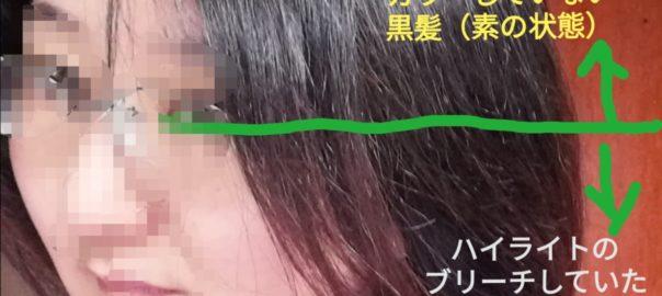 IMG 20210203 084534 e1612411969392 604x270 - カラーバターを長時間放置して検証。黒髪とブリーチの比較も
